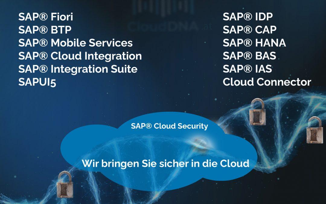 SAP CAP Grundlagen lernen mit Video